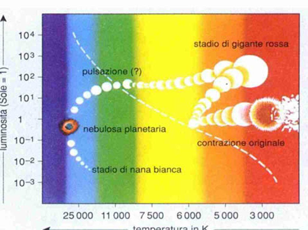 La noiosa vita del sole Stelle calde (molto massicce): venti stellare Stelle fredde (meno massicce): attività stellare VentiAttività