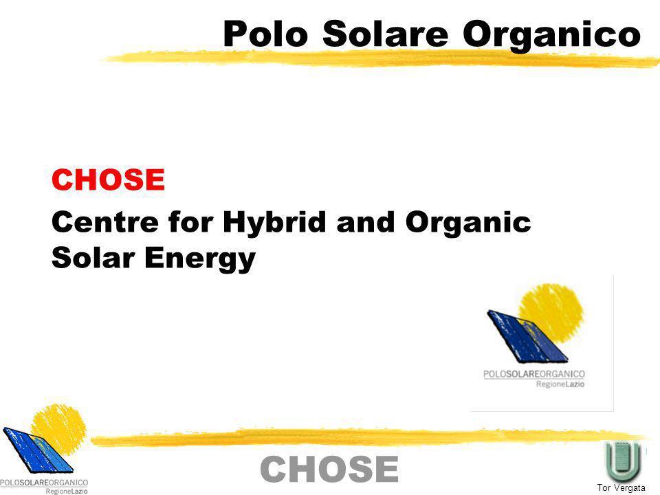 CHOSE: fatti Nasce il 19 dicembre 2006 Scopi Sviluppare un processo tecnologico per le celle organiche/ibride (principalmente DSSC) Definire una processo di industrializzazione del fotovoltaico organico (principalmente DSSC) Punto di riferimento sul fotovoltaico nel panorama regionale Attualmente coinvolge 6 gruppi di Tor Vergata (Ingegneria e Chimica), tre gruppi esterni (Ferrara, La Sapienza e CNR) e una società di ricerca (Labor) Punto di aggregazione per sviluppo di progetti correlati al fotovoltaico organico (FP7, FIRB, FIRS, PRIN etc.