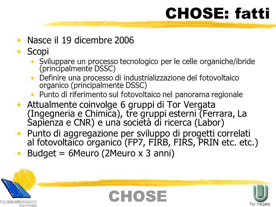 CHOSE: fatti Nasce il 19 dicembre 2006 Scopi Sviluppare un processo tecnologico per le celle organiche/ibride (principalmente DSSC) Definire una proce