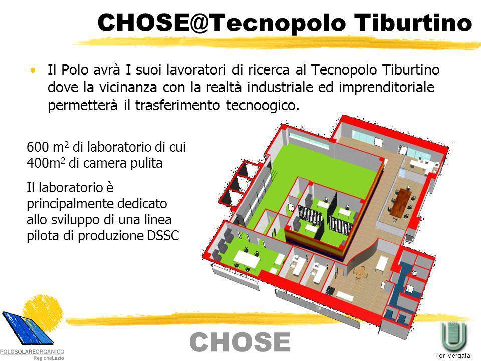 Cella DSSC Standard Materiale commerciale + materiali sintetizzati ad hoc Catalizzatore Vetro conduttivo (TCO) Elettrolita Pigmenti (Dye) assorbiti TiO 2 Vetro conduttivo (TCO) CHOSE Tor Vergata