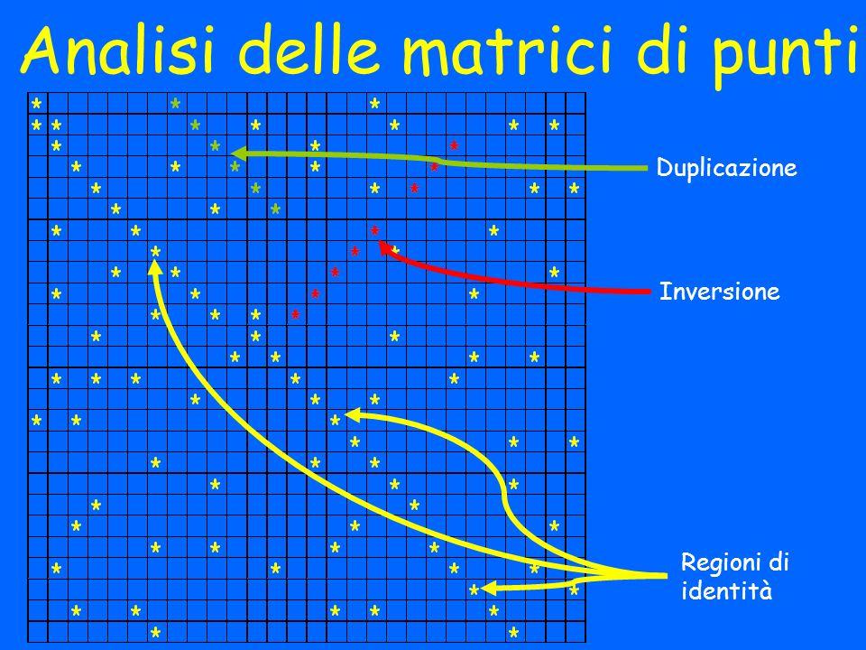 Analisi delle matrici di punti Regioni di identità Inversione Duplicazione