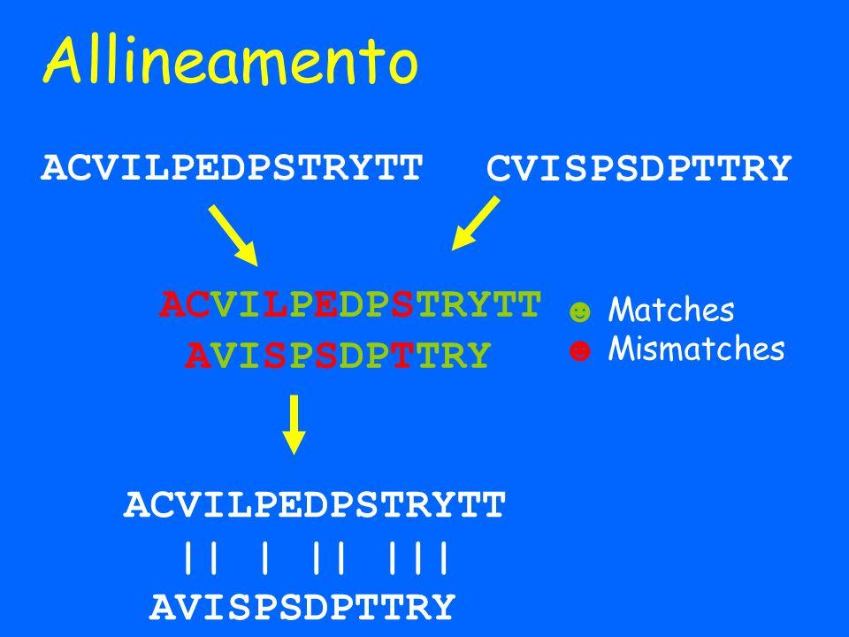 Punteggio di Identità Identità = 8 ACVILPEDPSTRYTT || | || ||| AVISPDDPTTRY QUESTAELASEQUENZADIUNAPROTEINA |||||| || ||| QUESTAILANUOVASECUENZEDOUNAINA Proteina 1 Proteina 2 | | SDFNWEOIAHTLKWEFLDFNLSKDFNSLD Proteina 3 QUESTAELASEQUENZADIUNAPROTEINA Proteina 1 Identità = 11 Identità = 2