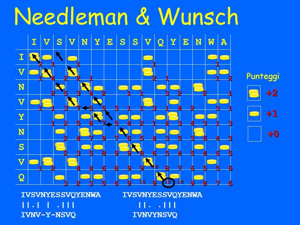 Needleman & Wunsch IVSVNYESSVQYENWA I V N V Y N S V Q IVSVNYESSVQYENWA ||.| |.||| IVNV-Y-NSVQ 21111 142212112 25342113221 113755311314231 125875421434