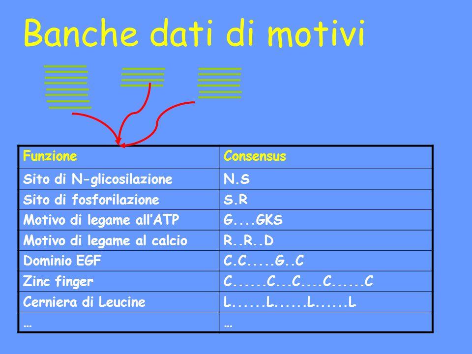 Banche dati di motivi FunzioneConsensus Sito di N-glicosilazioneN.S Sito di fosforilazioneS.R Motivo di legame allATPG....GKS Motivo di legame al calcioR..R..D Dominio EGFC.C.....G..C Zinc fingerC......C...C....C......C Cerniera di LeucineL......L......L......L ……
