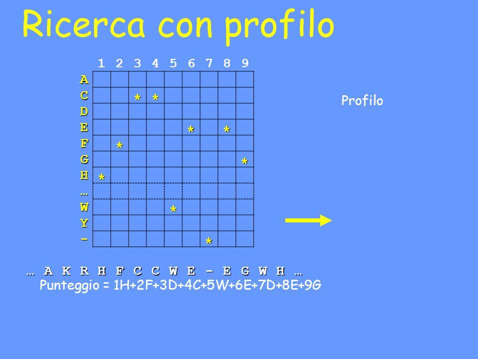 Ricerca con profilo Profilo 123456789 A C D E F G H … W Y - …AKRHFCCWE-EGWH… Punteggio = 1H+2F+3D+4C+5W+6E+7D+8E+9G ** ** * * * * *