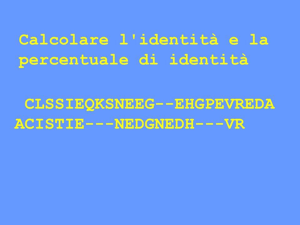 CLSSIEQKSNEEG--EHGPEVREDA ACISTIE---NEDGNEDH---VR Calcolare l'identità e la percentuale di identità