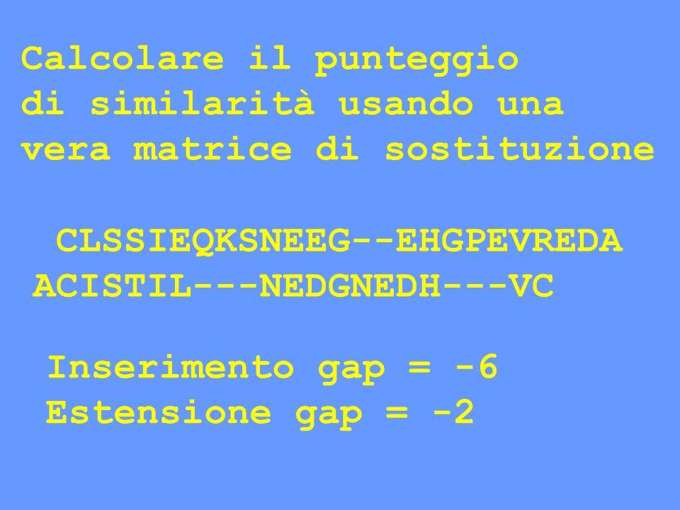 CLSSIEQKSNEEG--EHGPEVREDA ACISTIL---NEDGNEDH---VC Inserimento gap = -6 Estensione gap = -2 Calcolare il punteggio di similarità usando una vera matric
