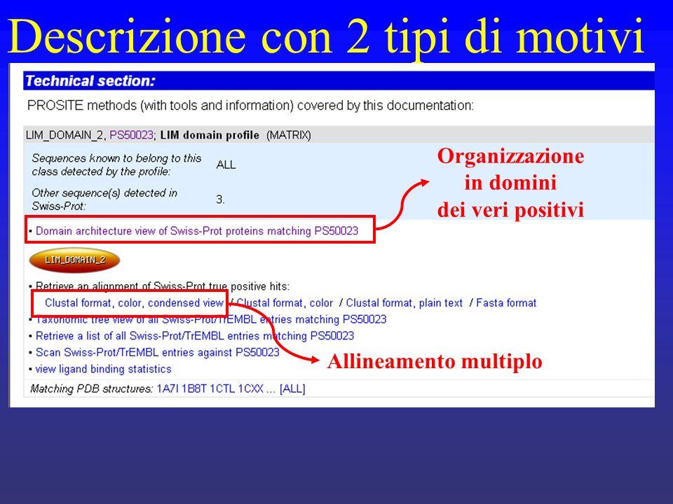 Descrizione con 2 tipi di motivi Allineamento multiplo Organizzazione in domini dei veri positivi