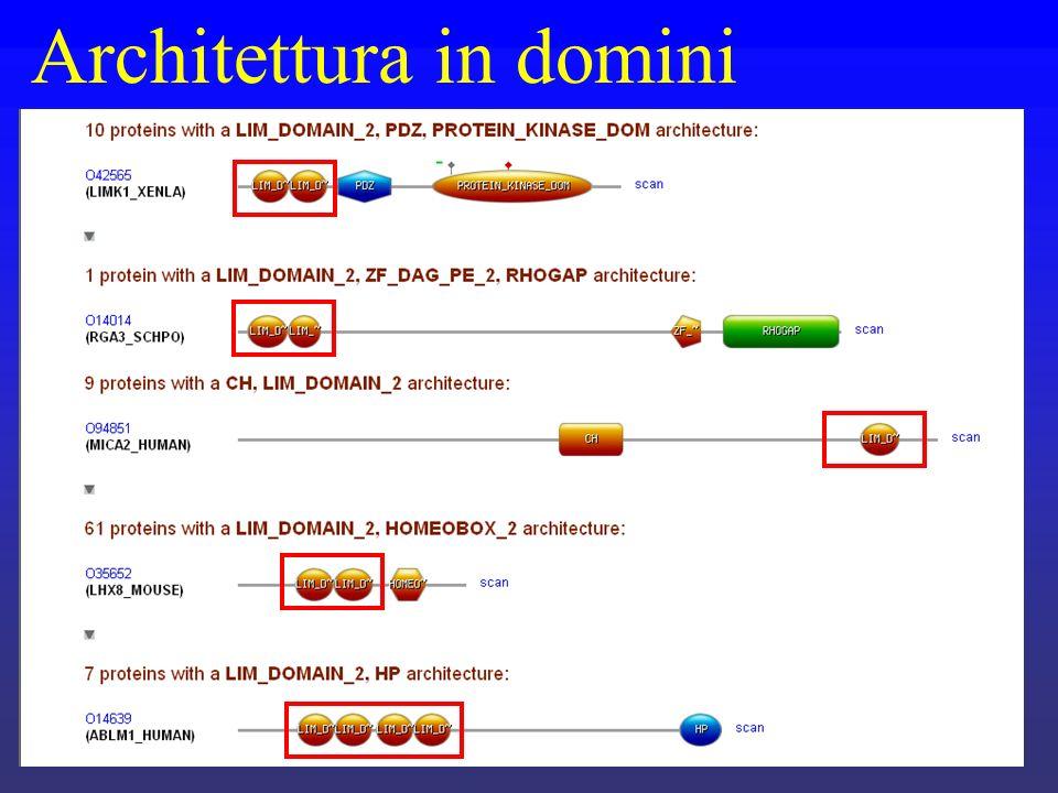 Architettura in domini