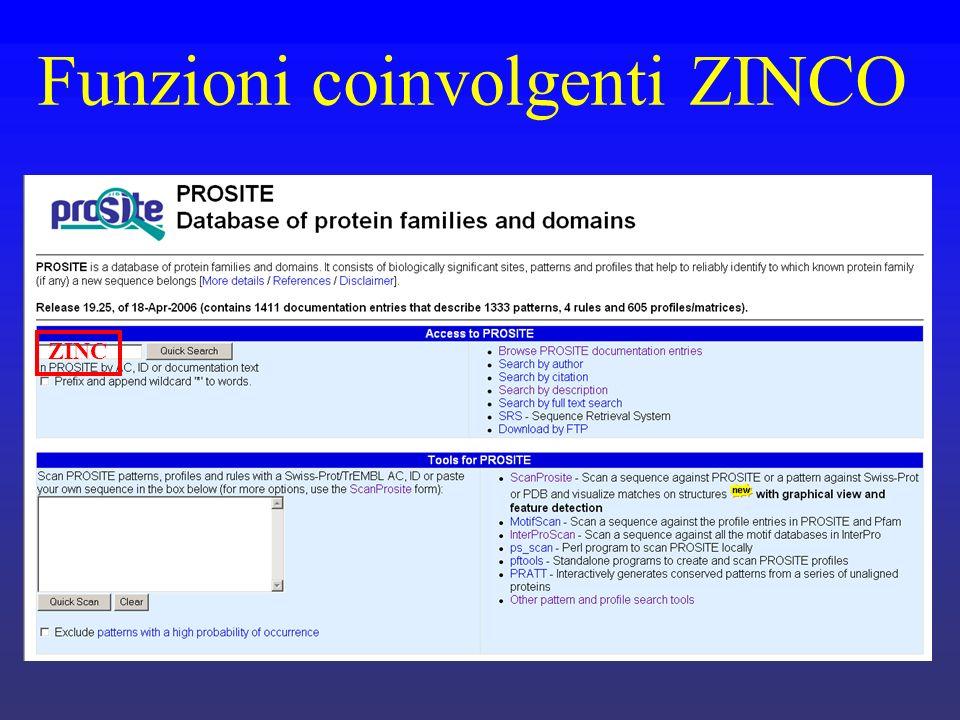 Funzioni coinvolgenti ZINCO ZINC
