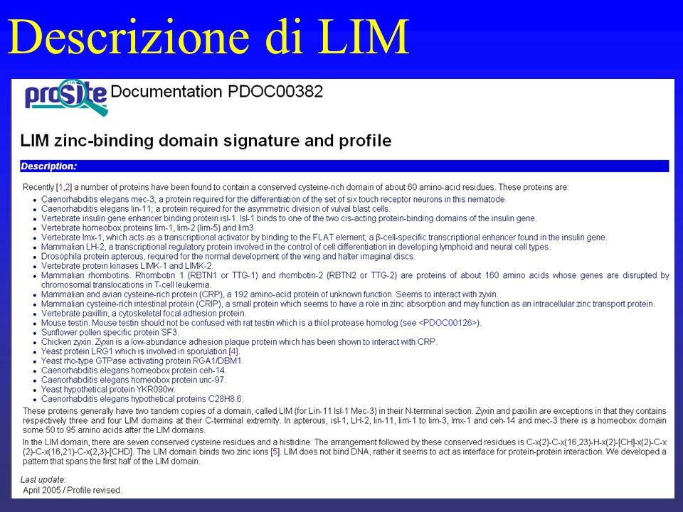 Descrizione di LIM