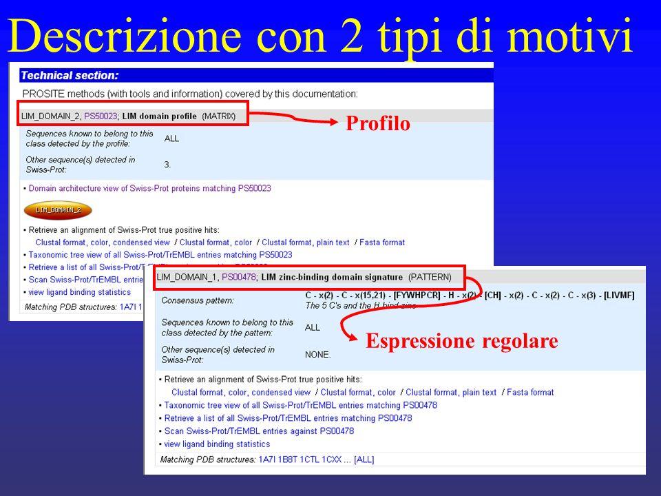 Descrizione con 2 tipi di motivi Profilo Espressione regolare