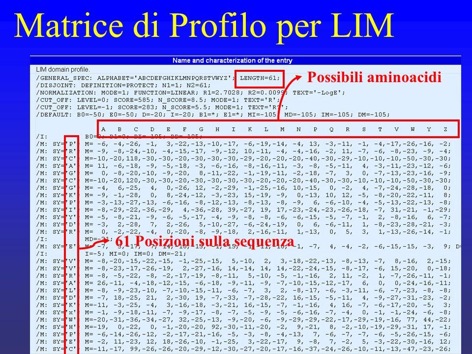 Matrice di Profilo per LIM Possibili aminoacidi 61 Posizioni sulla sequenza