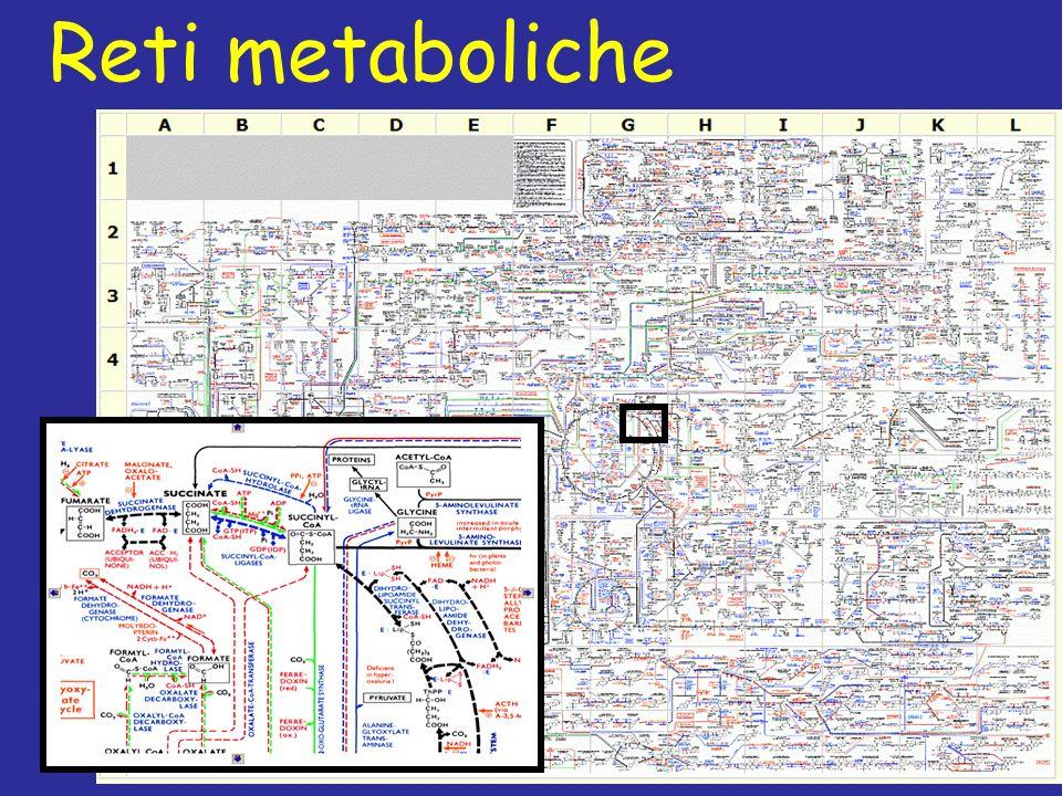 Reti metaboliche