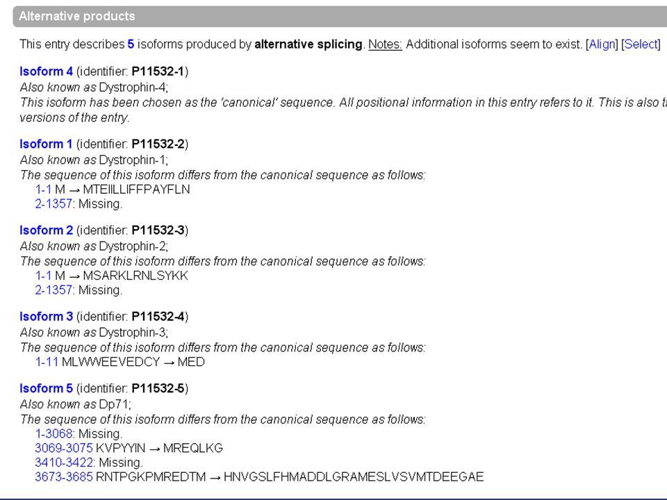 Esempio Quante sono le proteine di membrana?