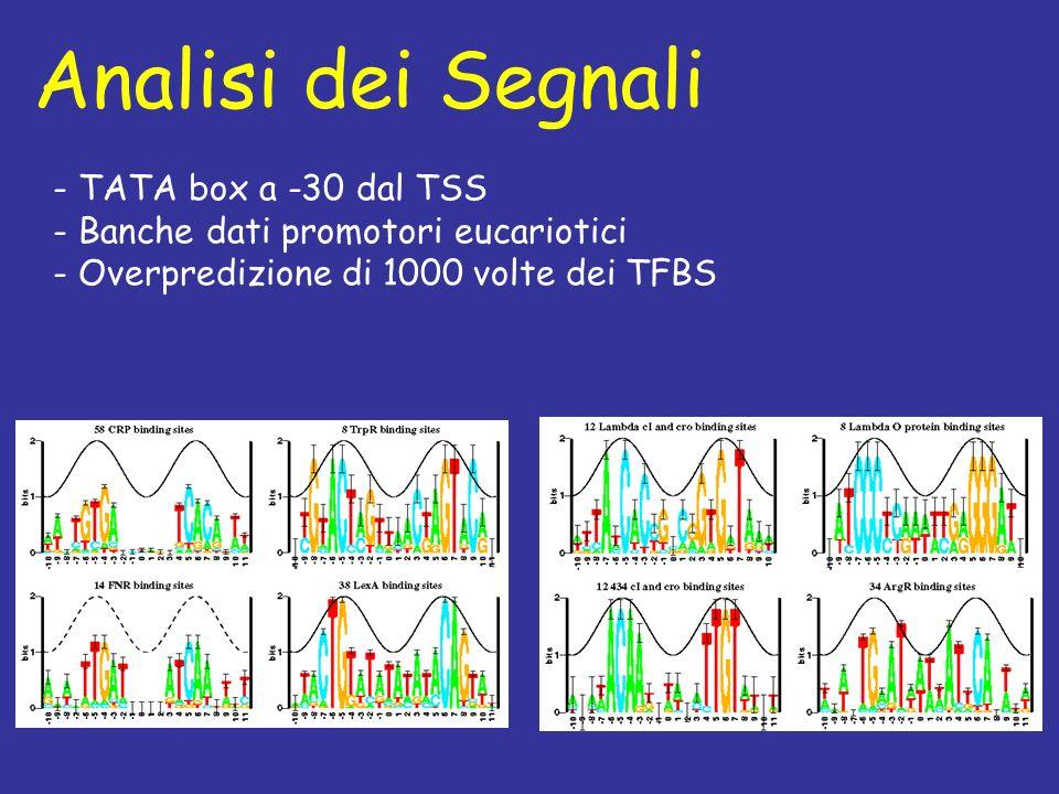 Analisi dei Segnali - TATA box a -30 dal TSS - Banche dati promotori eucariotici - Overpredizione di 1000 volte dei TFBS