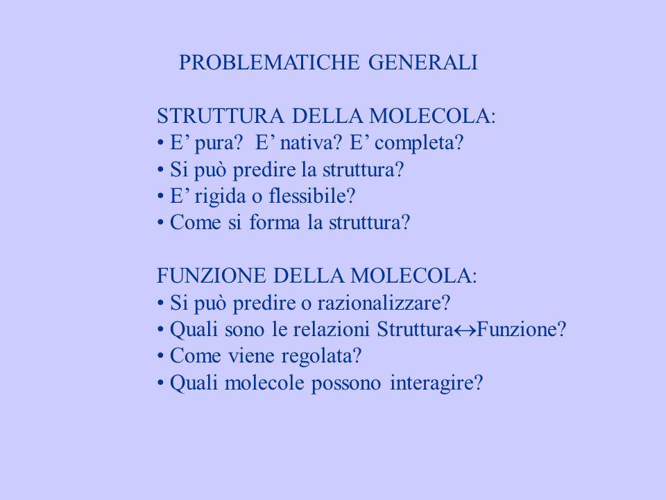 PROBLEMATICHE GENERALI STRUTTURA DELLA MOLECOLA: E pura? E nativa? E completa? Si può predire la struttura? E rigida o flessibile? Come si forma la st
