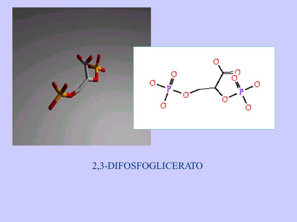 2,3-DIFOSFOGLICERATO