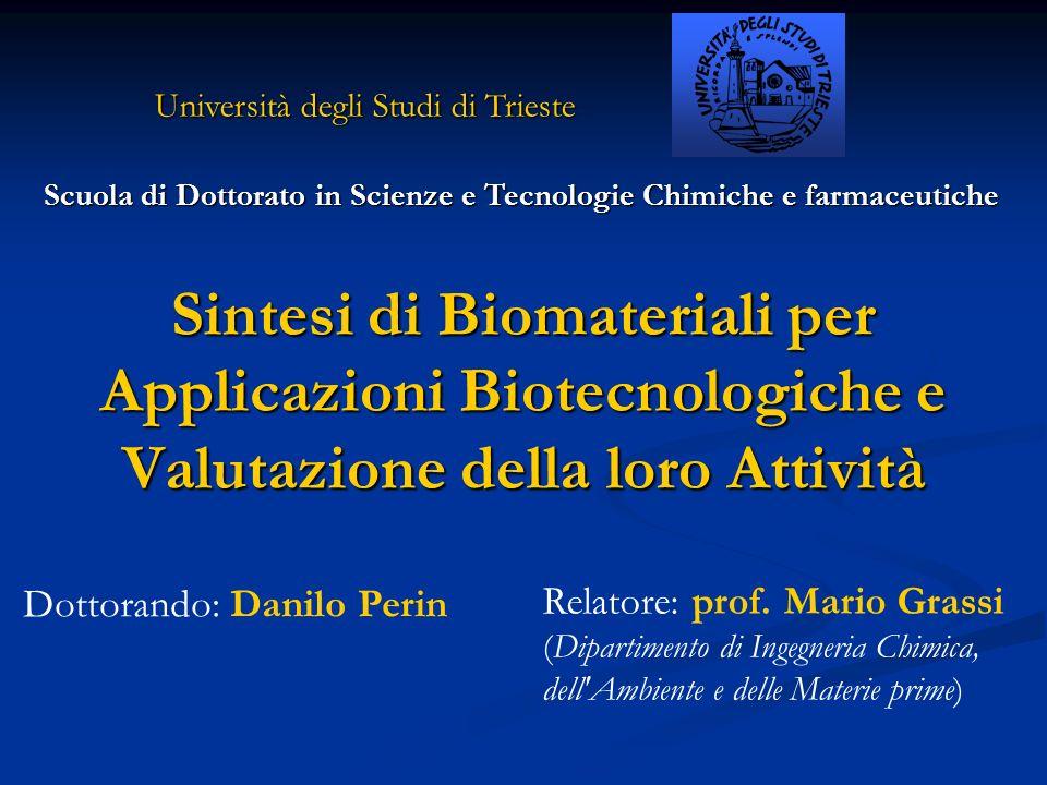 Scuola di Dottorato in Scienze e Tecnologie Chimiche e farmaceutiche Dottorando: Danilo Perin Relatore: prof. Mario Grassi (Dipartimento di Ingegneria
