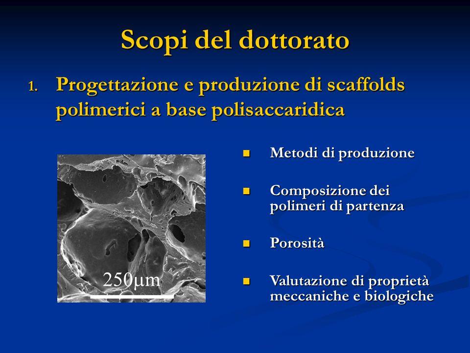 Scopi del dottorato 1. Progettazione e produzione di scaffolds polimerici a base polisaccaridica Metodi di produzione Metodi di produzione Composizion