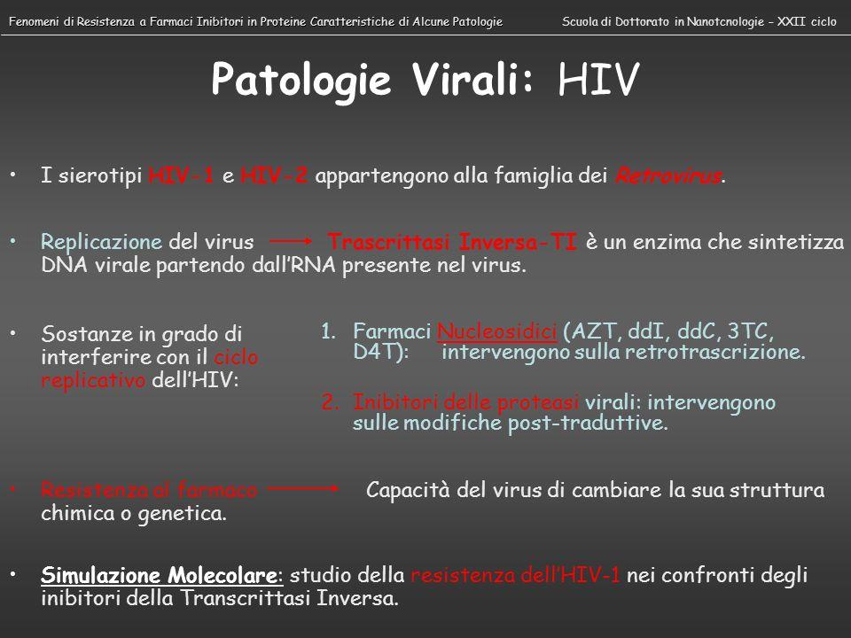 Patologie Virali: HCV Il virus dellepatite C può portare in 20-30 anni alla cirrosi epatica o, nel 20% e 5 % dei casi, ad un carcinoma epatocellulare.