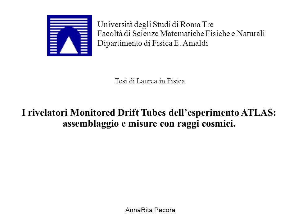 Università degli Studi di Roma Tre Facoltà di Scienze Matematiche Fisiche e Naturali Dipartimento di Fisica E.