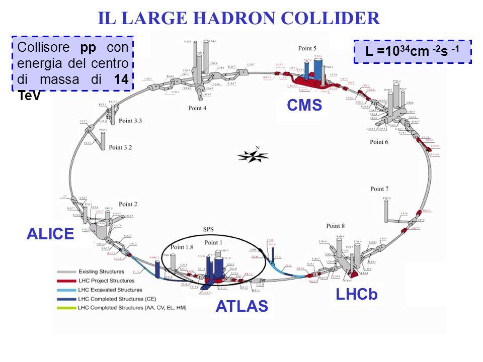 ATLAS CMS LHCb ALICE Collisore pp con energia del centro di massa di 14 TeV L =10 34 cm -2 s -1 IL LARGE HADRON COLLIDER