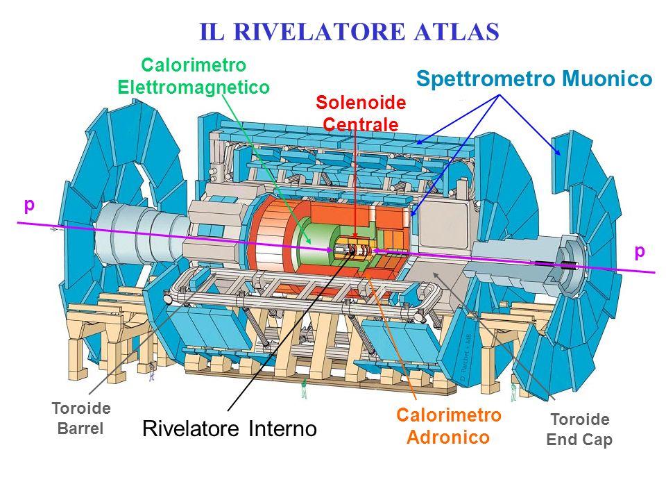 Rivelatore Interno Calorimetro Elettromagnetico Calorimetro Adronico Spettrometro Muonico Toroide End Cap Toroide Barrel IL RIVELATORE ATLAS Solenoide Centrale p p