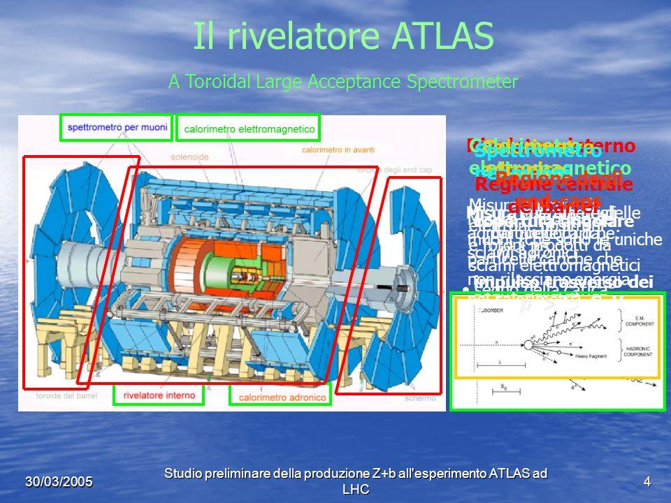 Studio preliminare della produzione Z+b all esperimento ATLAS ad LHC 4 30/03/2005 Il rivelatore ATLAS Rivelatore interno Misura i parametri delle particelle cariche: segno della carica momento della particella direzione iniziale vertice di interazione Calorimetro elettromagnetico Misura energia di elettroni, positroni e fotoni prodotti da sciami elettromagnetici Calorimetro adronico Misura energia degli adroni prodotti da sciami adronici Spettrometro per muoni Misura l impulso dei muoni (che sono le uniche particelle cariche che non rilasciano energia nei calorimetri) A Toroidal Large Acceptance Spectrometer Regione centrale del barrel copertura angolare impulso trasverso dei jet GeV Regione degli end-caps