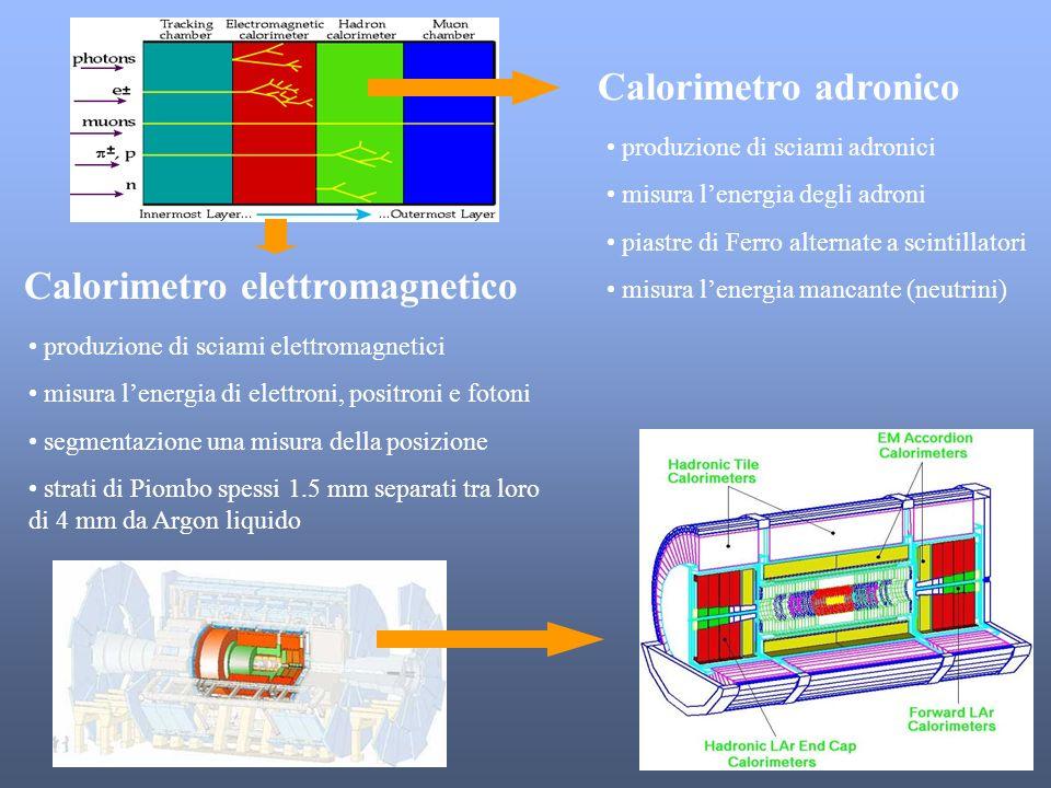 Calorimetro elettromagnetico Calorimetro adronico produzione di sciami elettromagnetici misura lenergia di elettroni, positroni e fotoni segmentazione