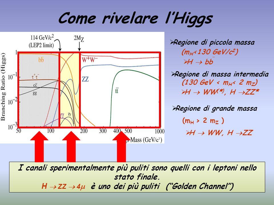 Come rivelare lHiggs I canali sperimentalmente più puliti sono quelli con i leptoni nello stato finale. H ZZ 4 è uno dei più puliti (Golden Channel) R