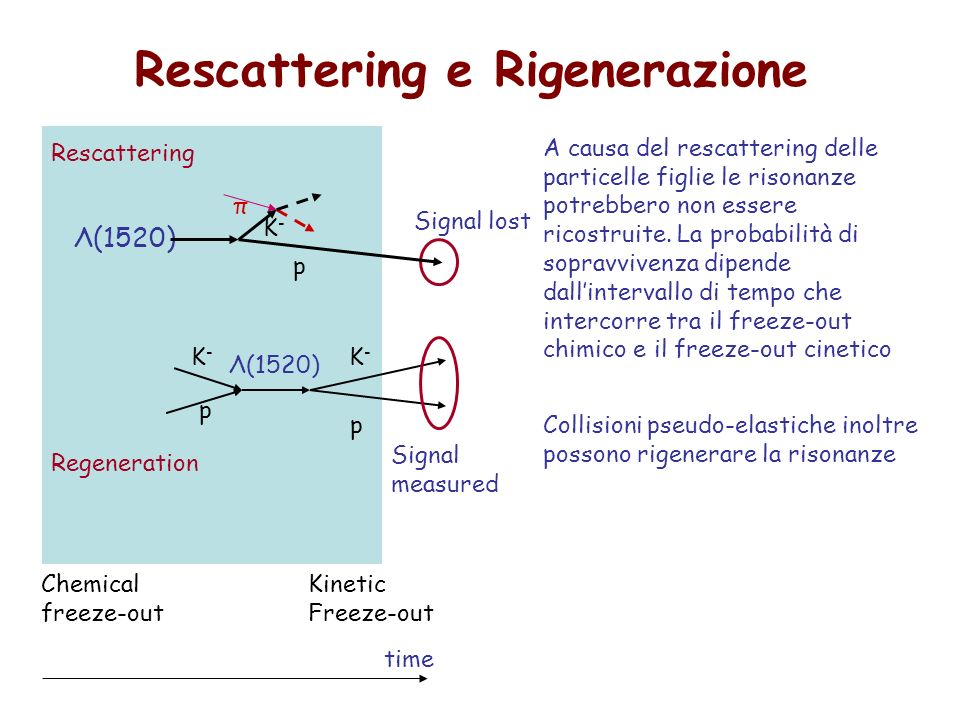 Rescattering e Rigenerazione Λ(1520) p π K-K- Signal lost Κ-Κ- p Λ(1520) K- K- p Regeneration Signal measured Rescattering A causa del rescattering delle particelle figlie le risonanze potrebbero non essere ricostruite.
