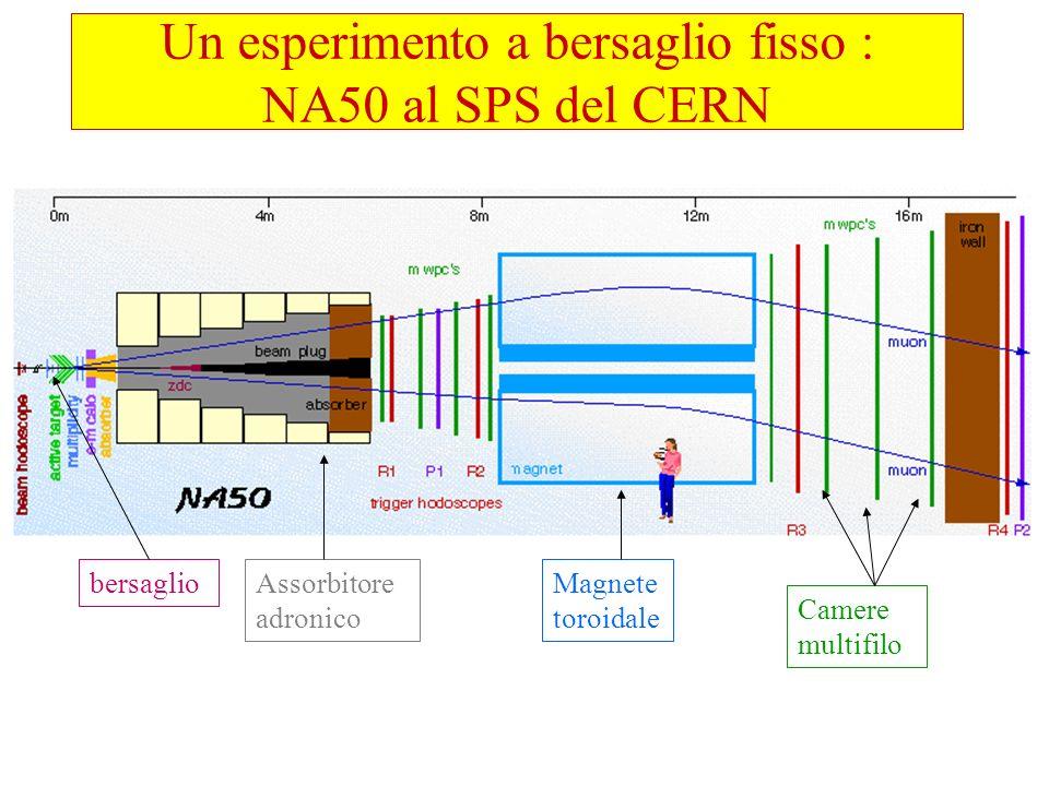 Magnete toroidale Camere multifilo Assorbitore adronico bersaglio Un esperimento a bersaglio fisso : NA50 al SPS del CERN