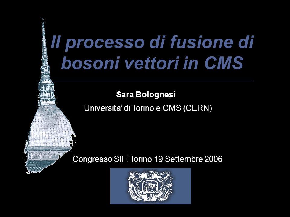 Il processo di fusione di bosoni vettori in CMS Sara Bolognesi Universita di Torino e CMS (CERN) Congresso SIF, Torino 19 Settembre 2006