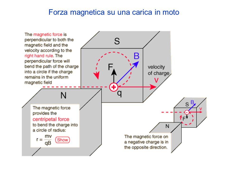 Forza magnetica su una carica in moto