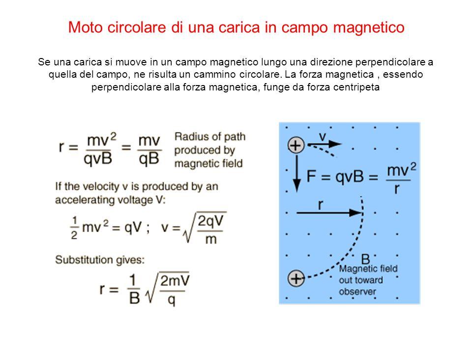 Moto circolare di una carica in campo magnetico Se una carica si muove in un campo magnetico lungo una direzione perpendicolare a quella del campo, ne