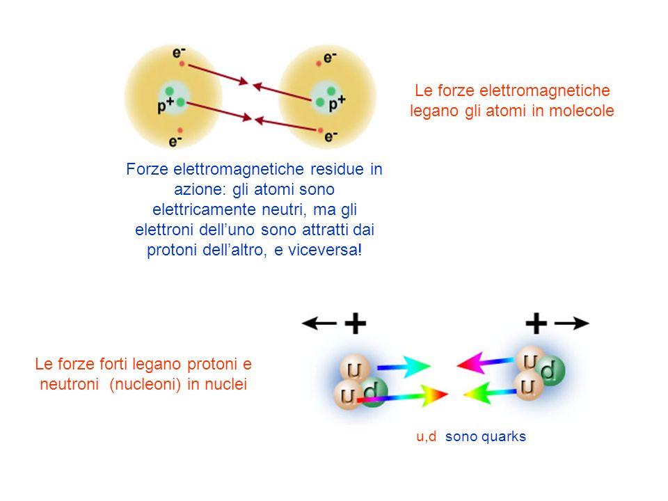 Le forze elettromagnetiche legano gli atomi in molecole Le forze forti legano protoni e neutroni (nucleoni) in nuclei u,d sono quarks Forze elettromag
