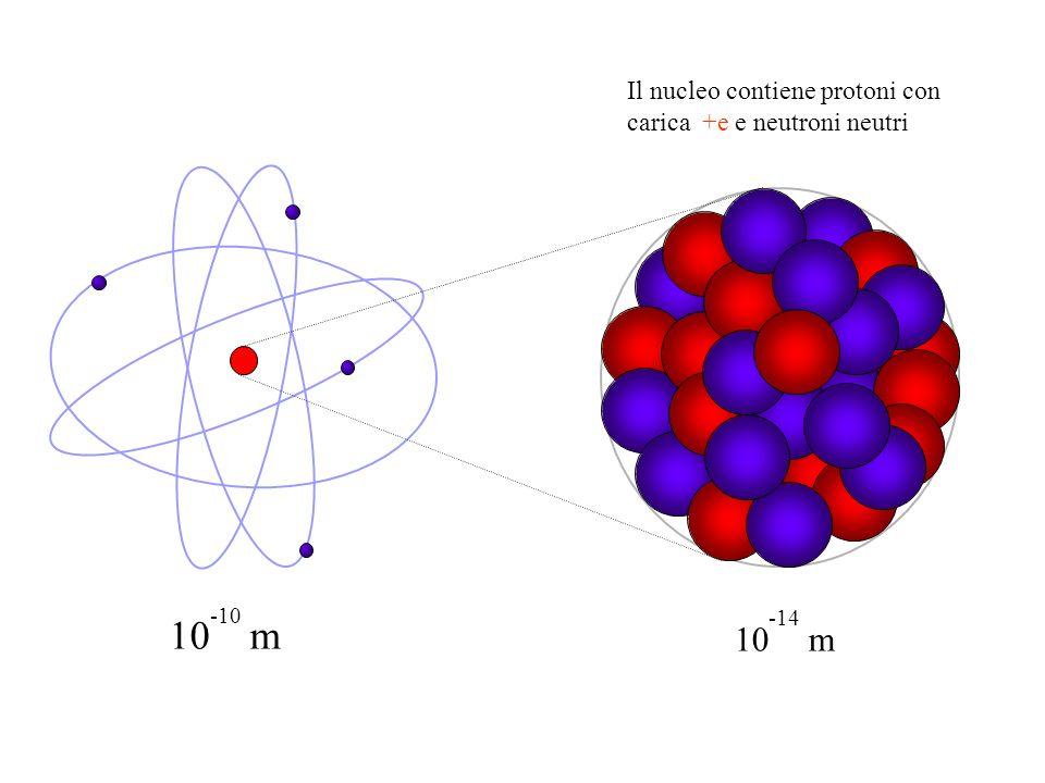 10 -10 m 10 -14 m Il nucleo contiene protoni con carica +e e neutroni neutri