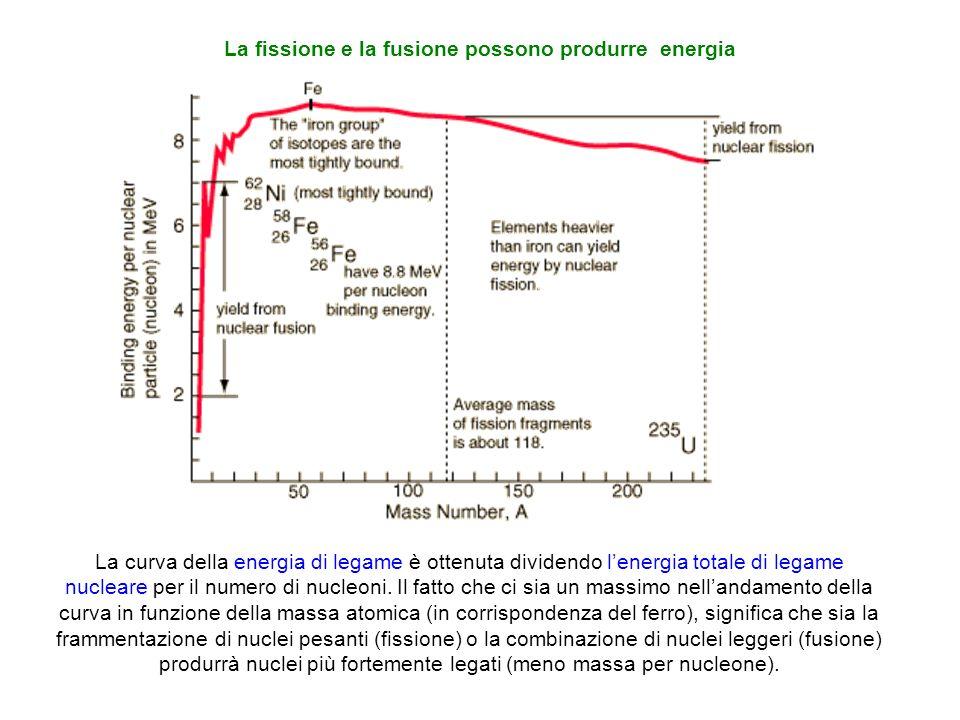 La fissione e la fusione possono produrre energia La curva della energia di legame è ottenuta dividendo lenergia totale di legame nucleare per il nume
