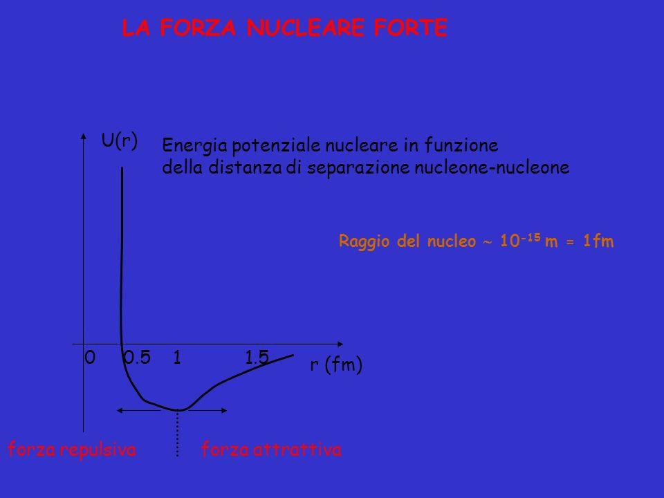 LA FORZA NUCLEARE FORTE Energia potenziale nucleare in funzione della distanza di separazione nucleone-nucleone Raggio del nucleo 10 -15 m= 1fm r (fm)