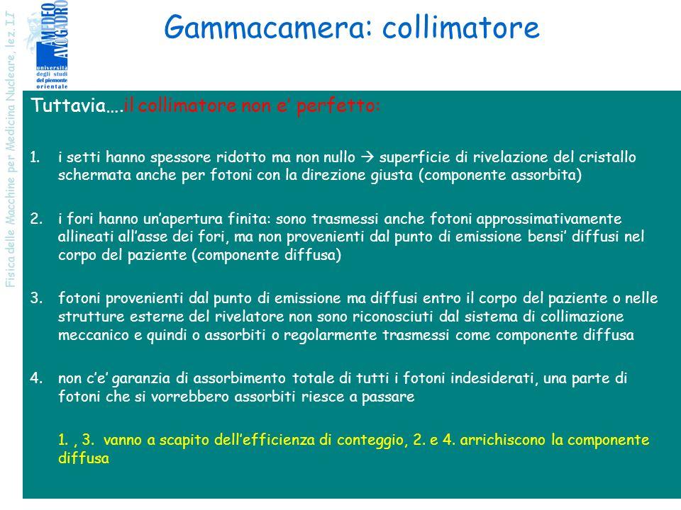 Fisica delle Macchine per Medicina Nucleare, lez. I I 14 Gammacamera: collimatore Tuttavia….il collimatore non e perfetto: 1.i setti hanno spessore ri