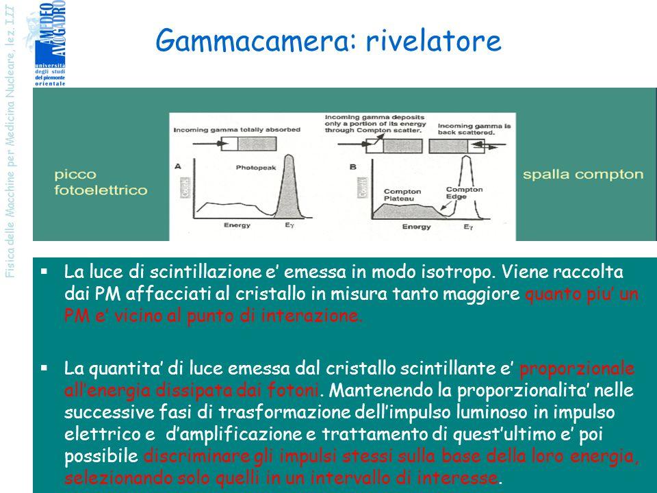 Fisica delle Macchine per Medicina Nucleare, lez. I II 18 Gammacamera: rivelatore La luce di scintillazione e emessa in modo isotropo. Viene raccolta