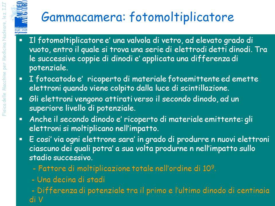 Fisica delle Macchine per Medicina Nucleare, lez. I II 23 Gammacamera: fotomoltiplicatore Il fotomoltiplicatore e una valvola di vetro, ad elevato gra