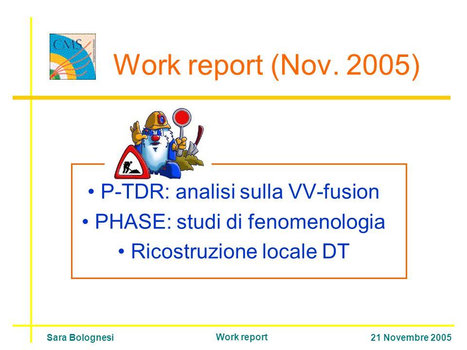 Work report (Nov.