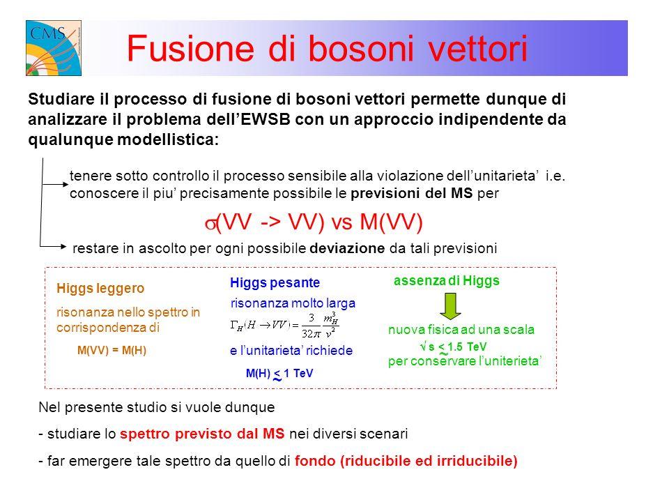 Fusione di bosoni vettori Studiare il processo di fusione di bosoni vettori permette dunque di analizzare il problema dellEWSB con un approccio indipe
