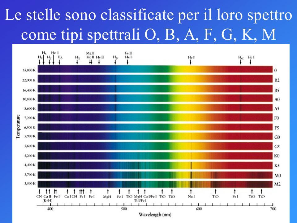 Le stelle sono classificate per il loro spettro come tipi spettrali O, B, A, F, G, K, M