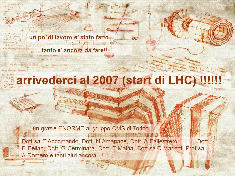 22 un po di lavoro e stato fatto......tanto e ancora da fare!! arrivederci al 2007 (start di LHC) !!!!!! un grazie ENORME al gruppo CMS di Torino Dott