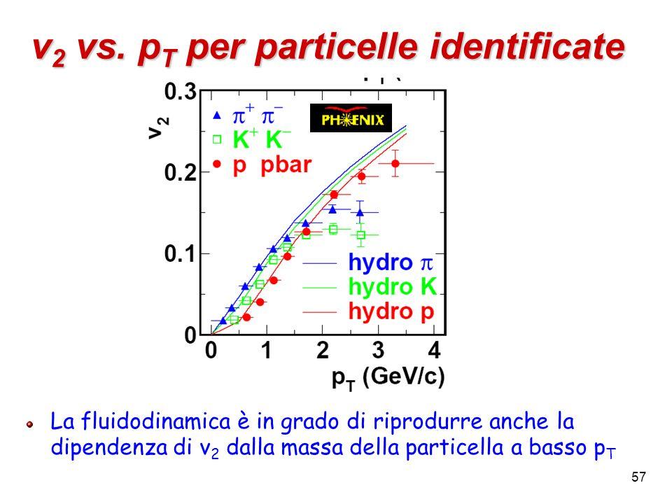 57 v 2 vs. p T per particelle identificate La fluidodinamica è in grado di riprodurre anche la dipendenza di v 2 dalla massa della particella a basso