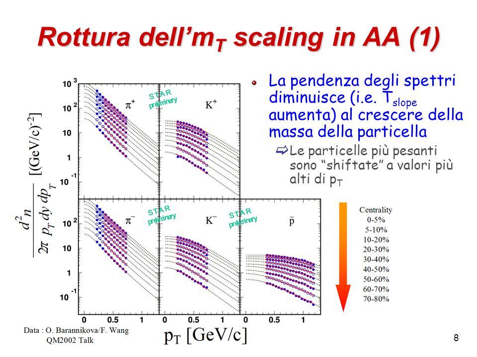 8 Rottura dellm T scaling in AA (1) La pendenza degli spettri diminuisce (i.e. T slope aumenta) al crescere della massa della particella Le particelle