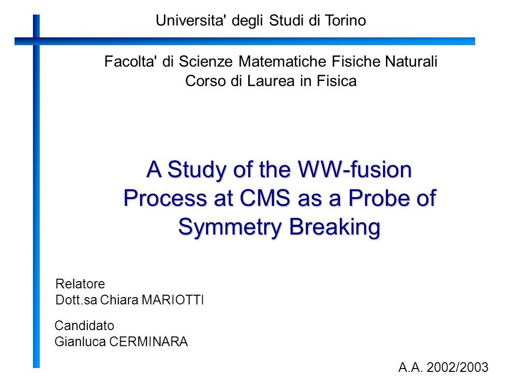 Universita' degli Studi di Torino Facolta' di Scienze Matematiche Fisiche Naturali Corso di Laurea in Fisica A Study of the WW-fusion Process at CMS a